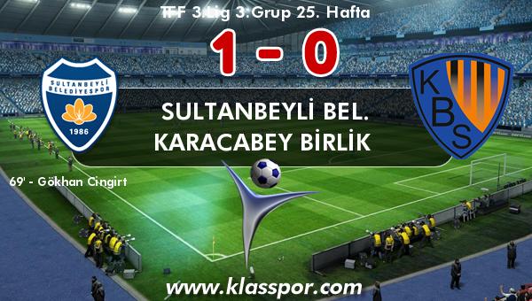 Sultanbeyli Bel. 1 - Karacabey Birlik  0