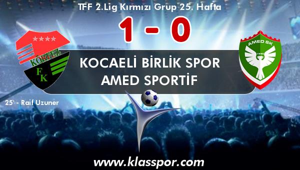 Kocaeli Birlik Spor 1 - Amed Sportif 0