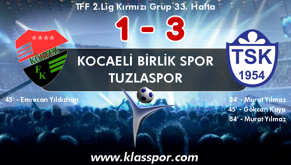 Kocaeli Birlik Spor 1 - Tuzlaspor 3