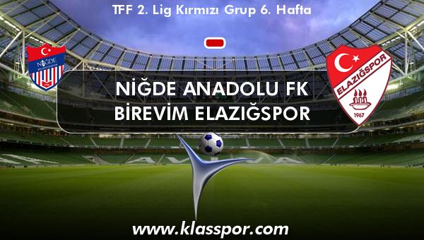 Niğde Anadolu FK  - Birevim Elazığspor